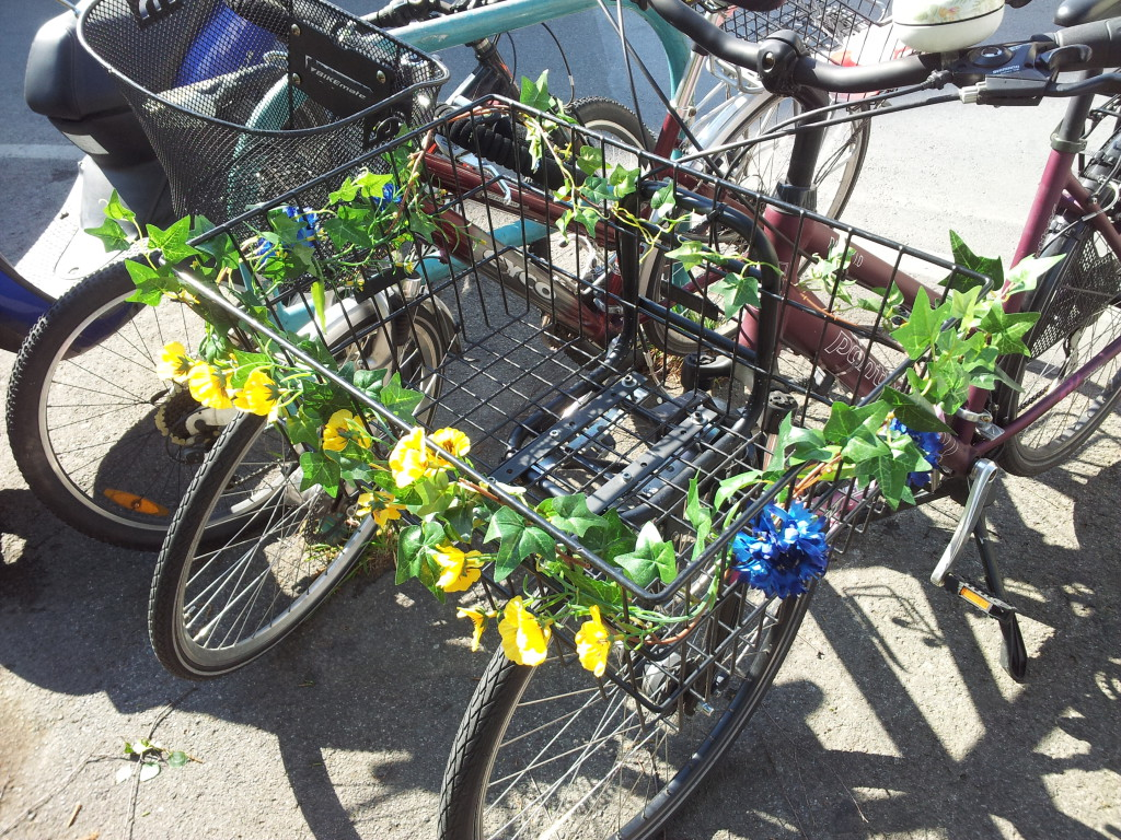 2015-04-29 Bluemchen-am-Rad2
